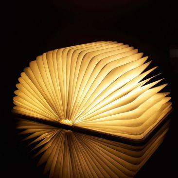 Lampe LED livre rechargeable