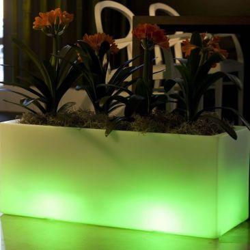 Jardiniere lumineuse sans fil