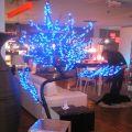 Cerisier lumineux - 648 LED 2.00 m