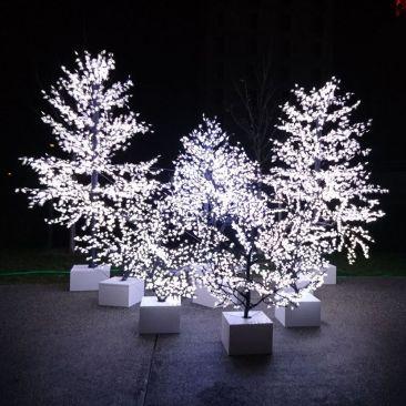 Peupliers lumineux - 1776 LED 3.50 m