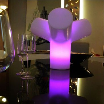 Centre de table lumineux Evolution