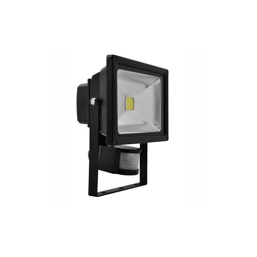 Projecteur LED 30 Watts avec détecteur