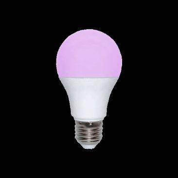 Ampoule LED E27 lumiere noire