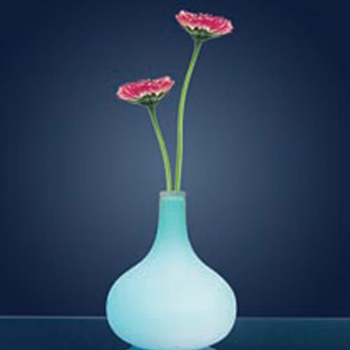 vase led