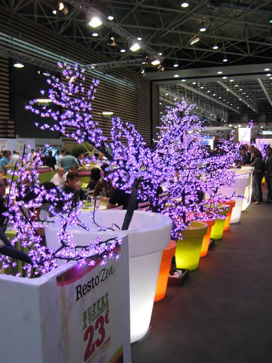 Bloom pots