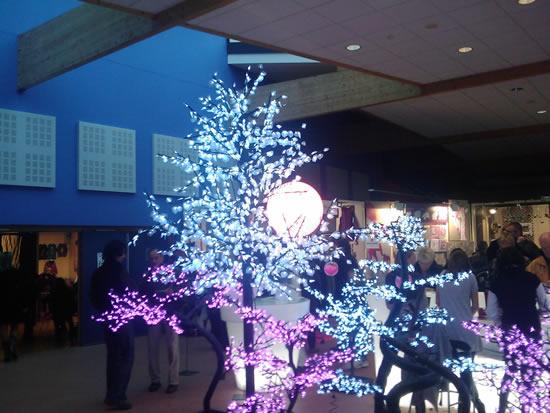 les arbres lumineux