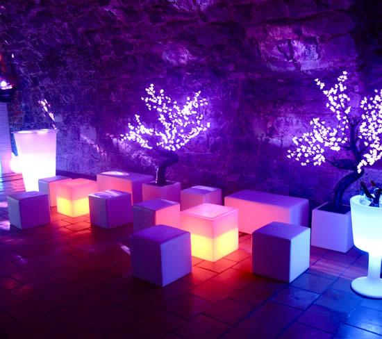 Arbres et cubes lumineux