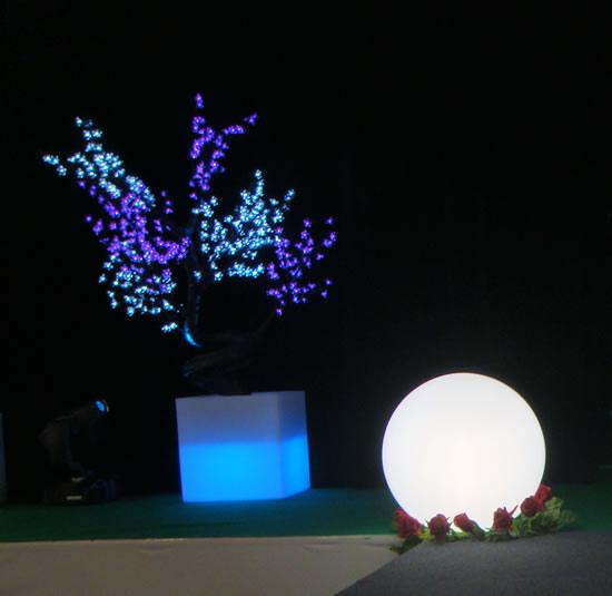 Arbres lumineux sa sphère et ses roses