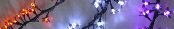 fleurs led noires