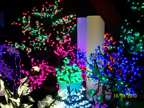 La forêt lumineuse led