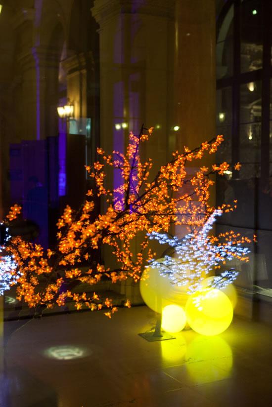 Cerisier lumineux orange