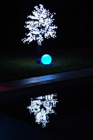 Arbre lumineux et sphère led