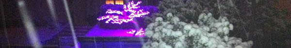 Arbres lumineux sous la neige