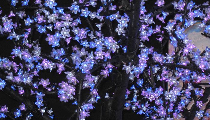 Cerisier lumineux RVB