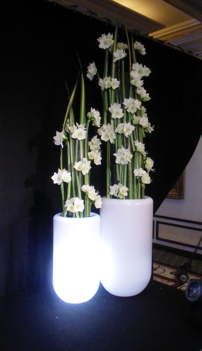 Pot lumineux pour plantes vertes
