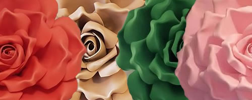 Des fleurs de toutes les couleurs
