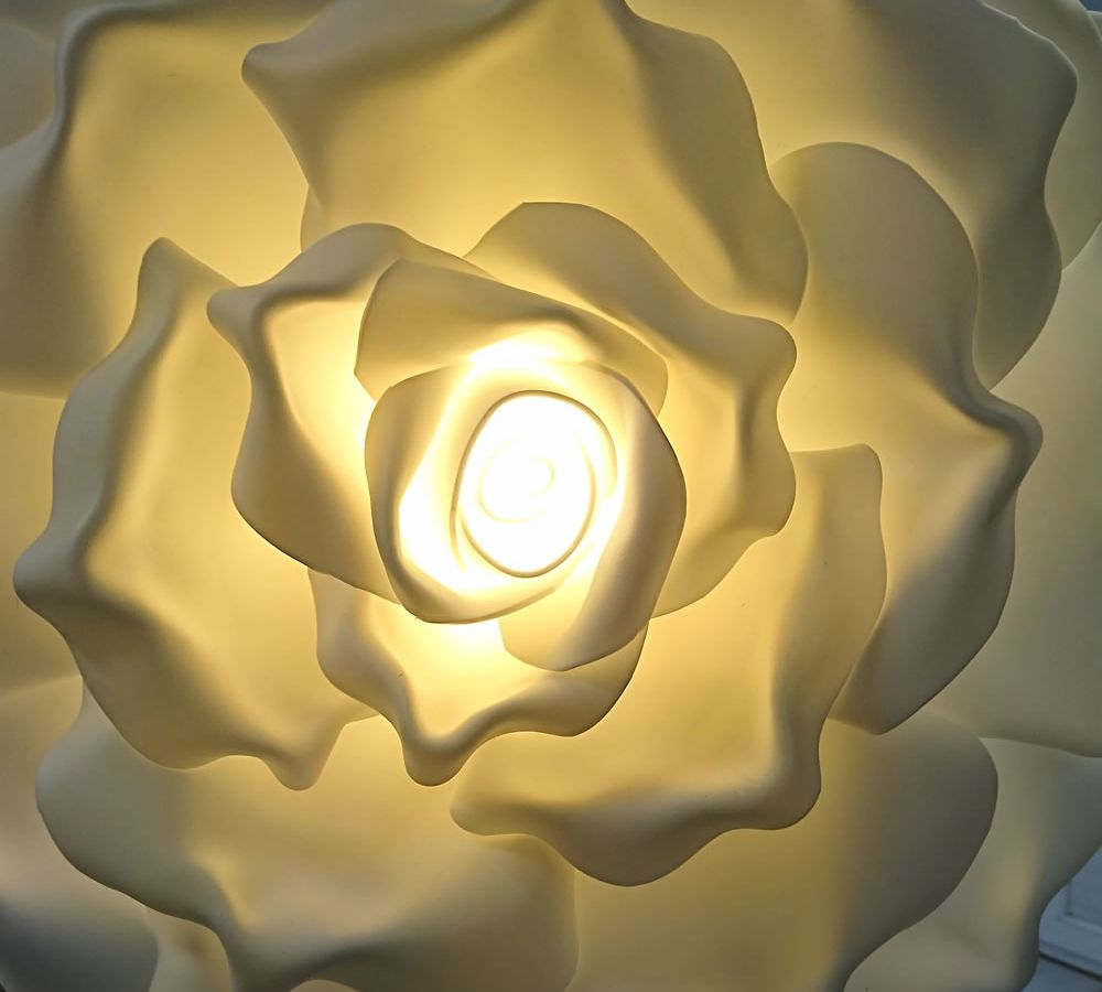 Roses lumineuses