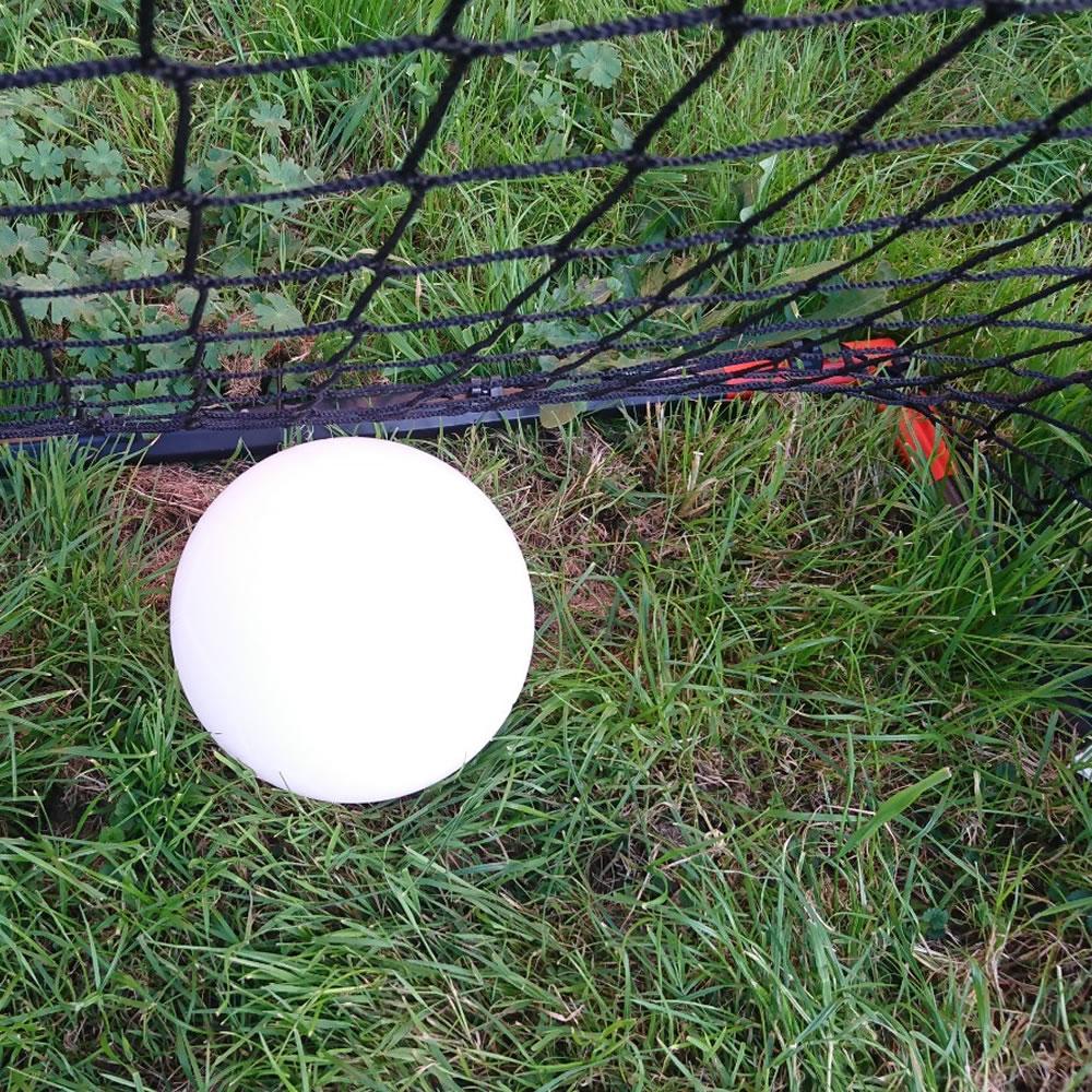 Ballon de foot 6C