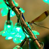 Cerisier lumineux led