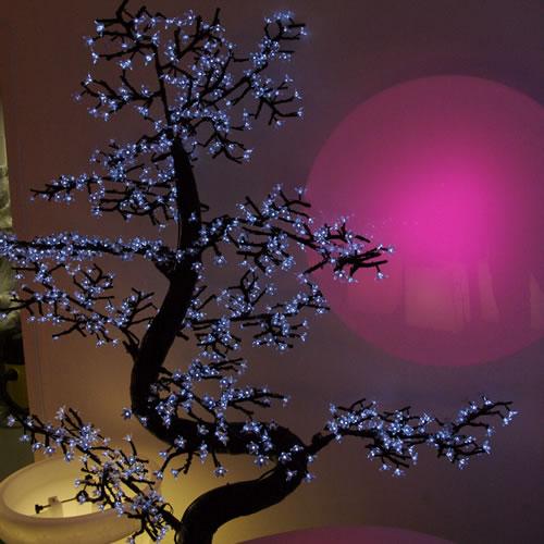 Bonsai lumineux a led m bonsa lumineux led - Arbre lumineux led interieur ...