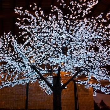 cerisier lumineux a leds geant arbre lumineux g ant. Black Bedroom Furniture Sets. Home Design Ideas