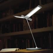 LAMPE LED SEAGULL